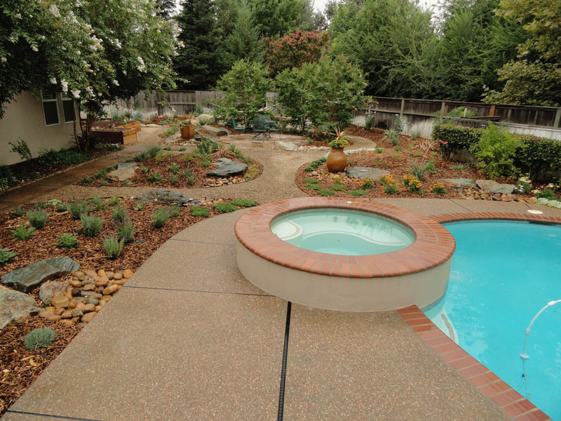 Lawnless landscape pool